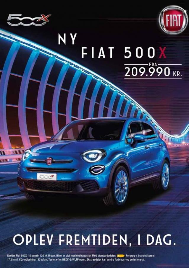 500X . Fiat (2019-12-31-2019-12-31)