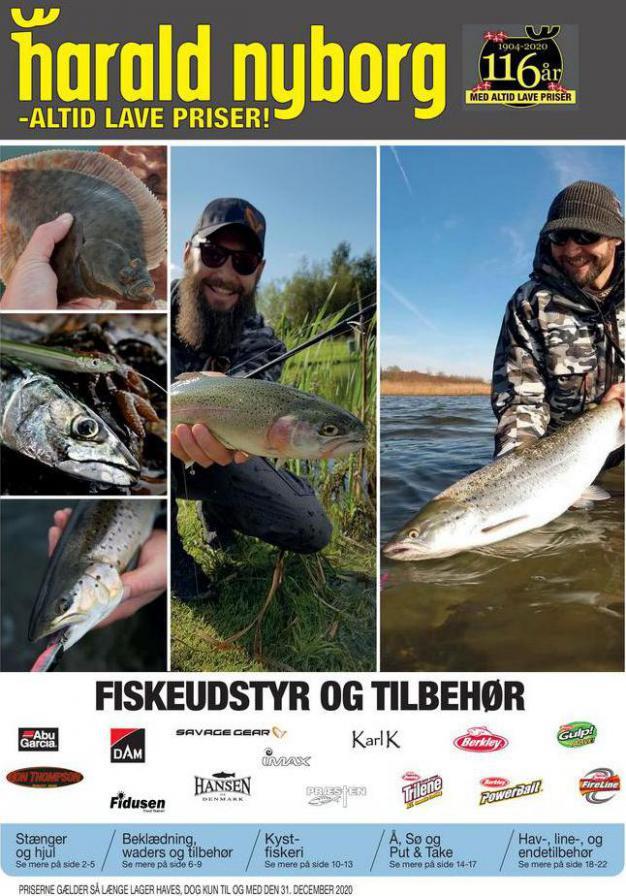 Harald Nyborg Tilbudsavis Fiskeri . Harald Nyborg (2020-12-31-2020-12-31)