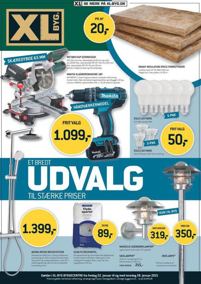 UDVALG . XL-BYG (2021-01-28-2021-01-28)